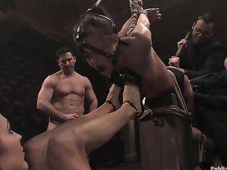 Anal Sex, BDSM, Blowjob, Brunette, Cecilia Vega, French, Group Sex, Hardcore, HD, Humiliation,