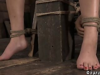 Asian Pussy, BDSM, Bondage, Ethnic, Fetish, Screaming, Sex Toys, Submissive, Torture,