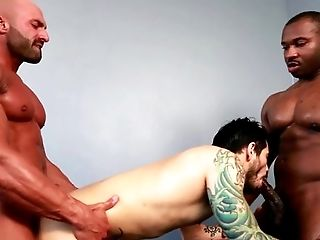 Anal Sex, Big Ass, Big Black Cock, Big Cock, Black, Blowjob, Bold, Caucasian, Ethnic, Group Sex,